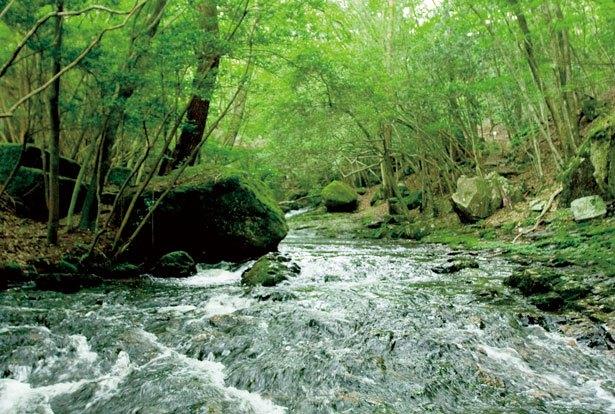 瑠璃のように美しい渓谷、るり渓に温泉!癒し効果抜群のハイキングへ|ウォーカープラス