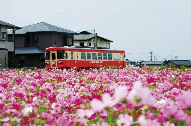 【九州】絶景・温泉・話題の歴史旅も!日帰りで楽しむおでかけスポット15選 | ガジェット通信 GetNews