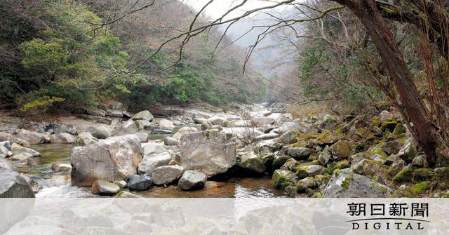 岡山)新緑、温泉、グルメ 春の奥津渓を楽しむ:朝日新聞デジタル