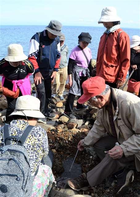 海岸掘って温泉を探そう 笠矢の湯、男鹿で40人楽しむ|秋田魁新報電子版