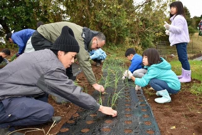 【創業389年の老舗旅館】 箱根温泉旅館一の湯が「一の湯農園」を開始!:時事ドットコム