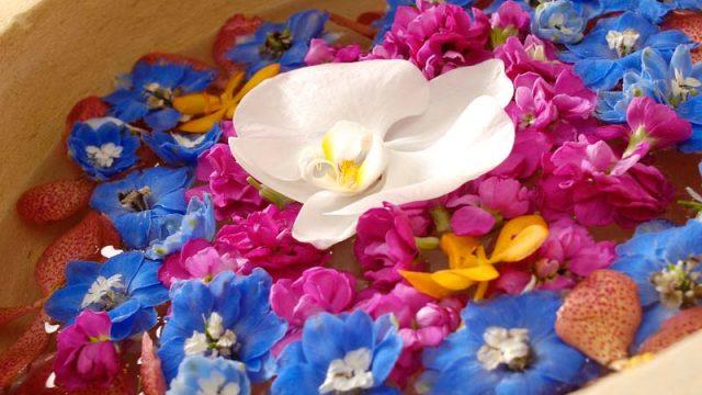 女風呂限定で毎月第四金曜日に用意される花風呂 リブール