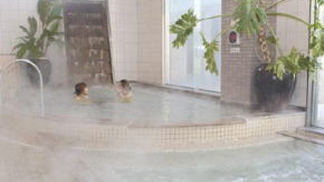 ヨコヤマユーランド 緑 洋風風呂 ヨコヤマユーランド 緑 HP