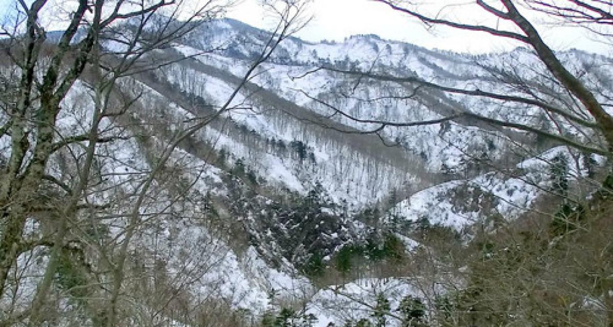 栗駒国定公園・夏油温泉いで湯ライン(北上市)=3月12、15日   岩手日報 IWATE NIPPO