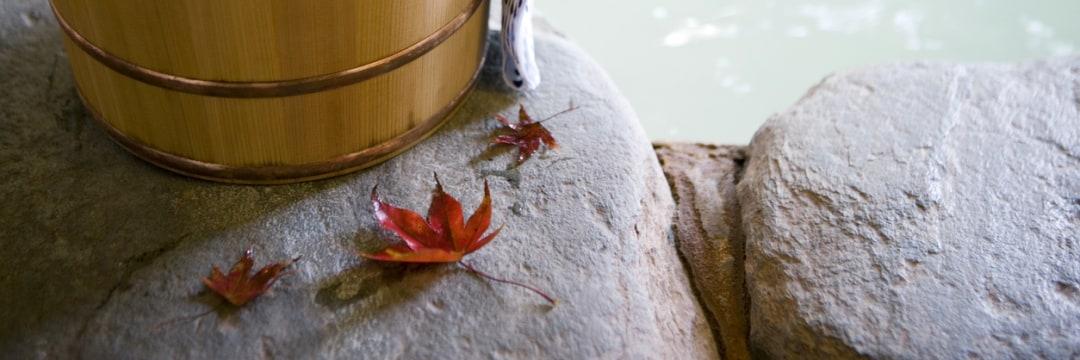 日本人が知らない、外国人から見た日本の温泉が「特別なワケ」(週刊現代) | 現代ビジネス | 講談社