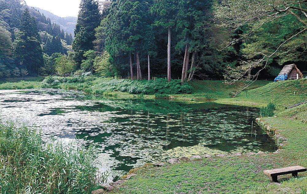 「ホタルの里」年内完成へ 金沢市、湯涌温泉の玉泉湖に