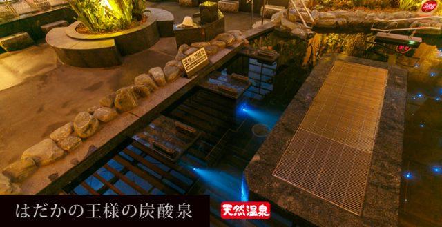 龍泉寺の湯 草加 はだかの王様の炭酸泉