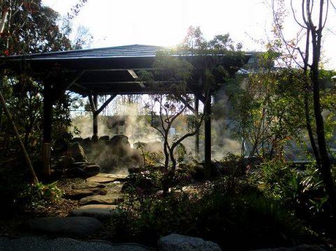 雅楽の湯 岩風呂