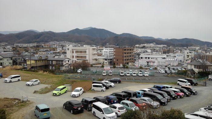 さざんか_丹沢の山々